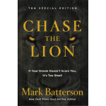 CHASE THE LION - MARK BATTERSON (LAST ONE)